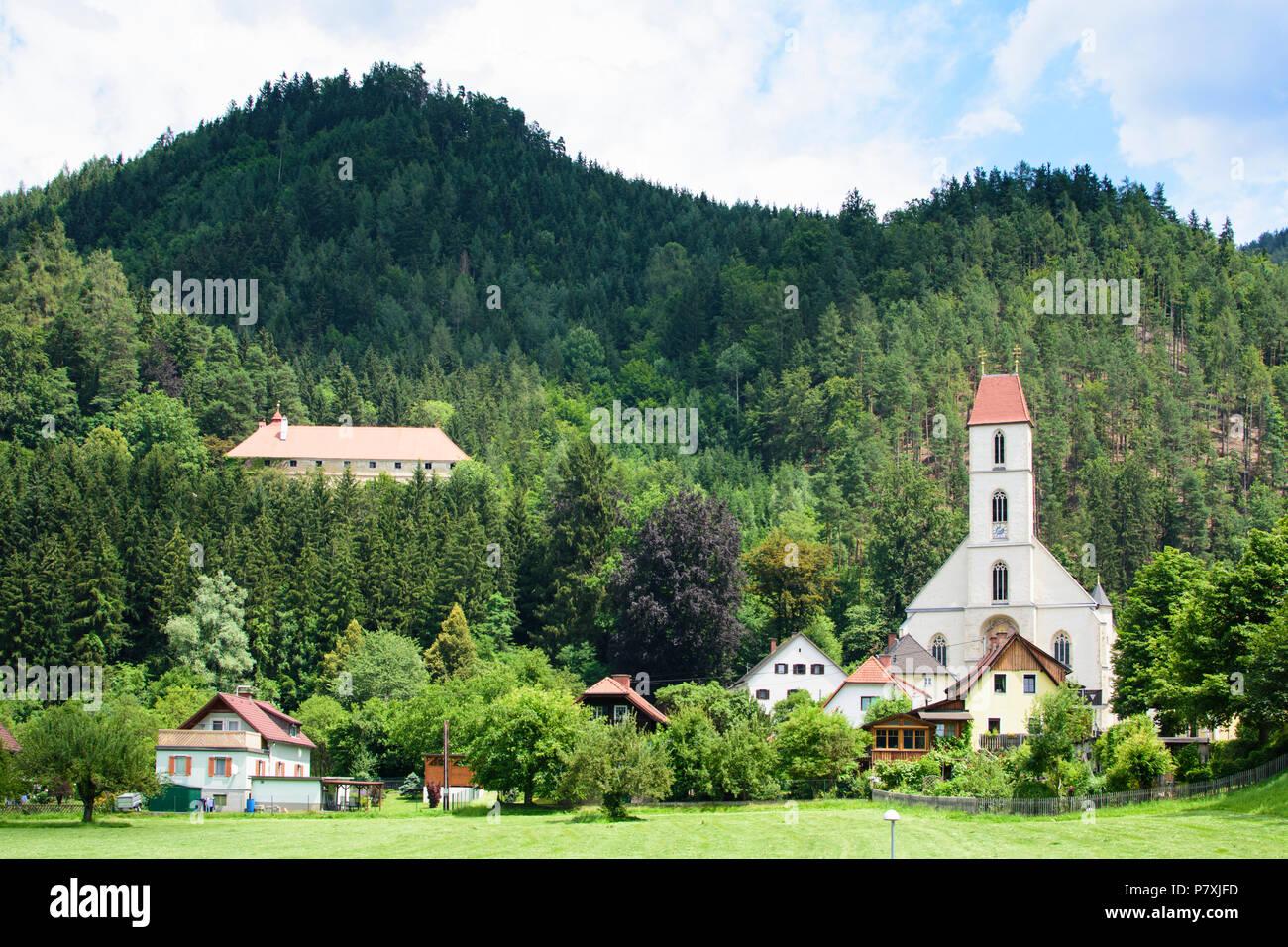 Topographisch-statistisches Lexikon von Steiermark: mit