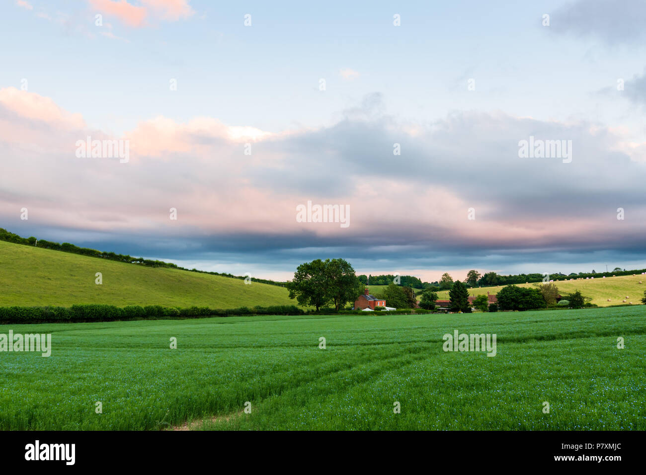 A farm cottage nestles in the Bix Valley in the Chilterns - Stock Image