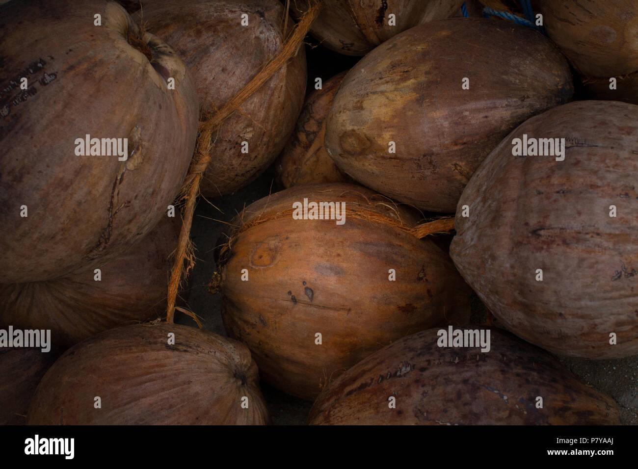 Coconuts Market Stock Photos & Coconuts Market Stock Images