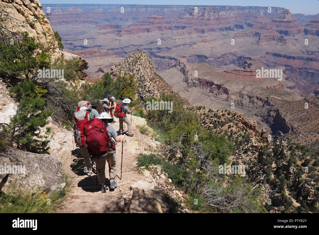 Backpackers descending the Grandview Trail on the way to Horseshoe Mesa in Grand Canyon National Park, Arizona, United States. - Stock Image