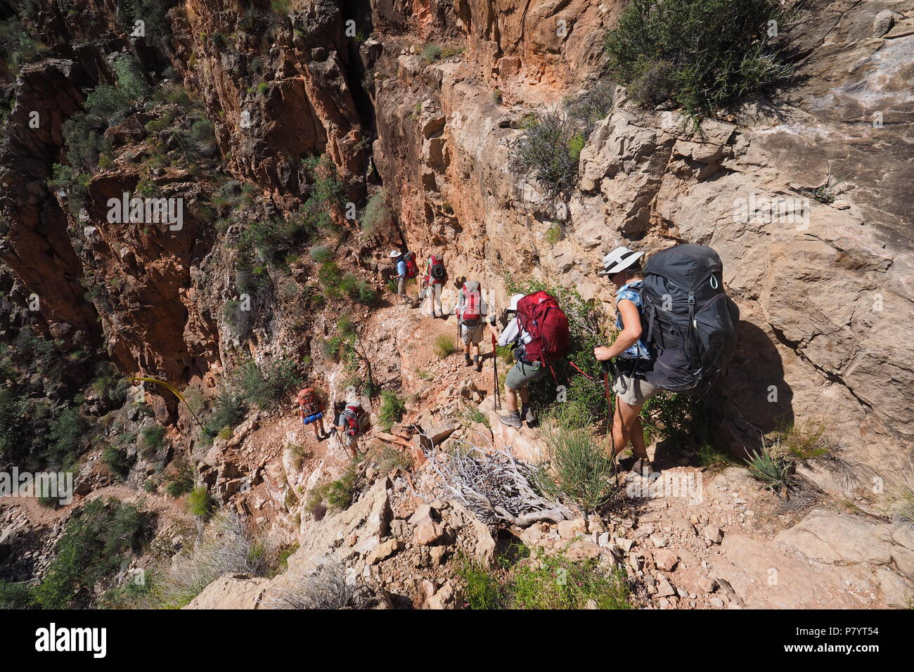 Backpackers descending a challenging portion of the Grandview Trail between Horseshoe Mesa and Page Spring in Grand Canyon National Park, Arizona. - Stock Image