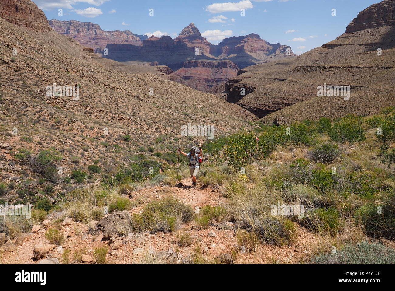 Young female backpacker on the Grandview trail in Grand Canyon National Park, Arizona, United States. - Stock Image