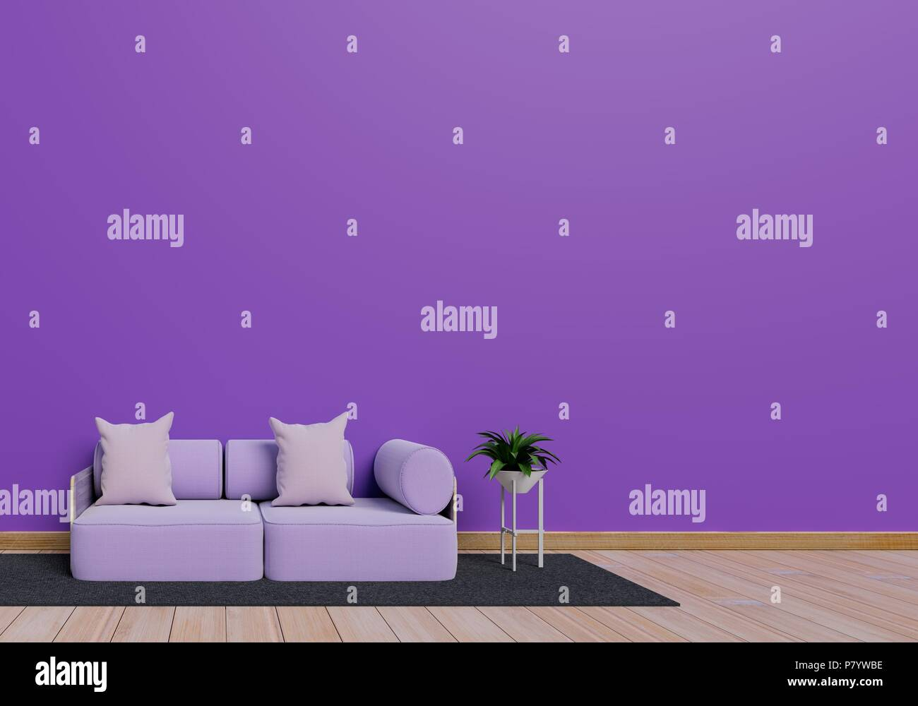 Modern interior design of purple living room with sofa and plant pot on brown glossy wooden floor. Grey mat element. Home and Living concept. Lifestyl - Stock Image