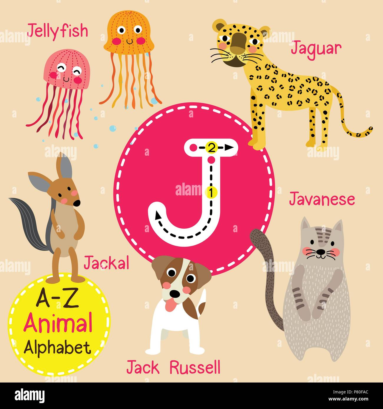 cute children zoo alphabet j letter tracing of funny animal cartoon for kids learning english vocabulary