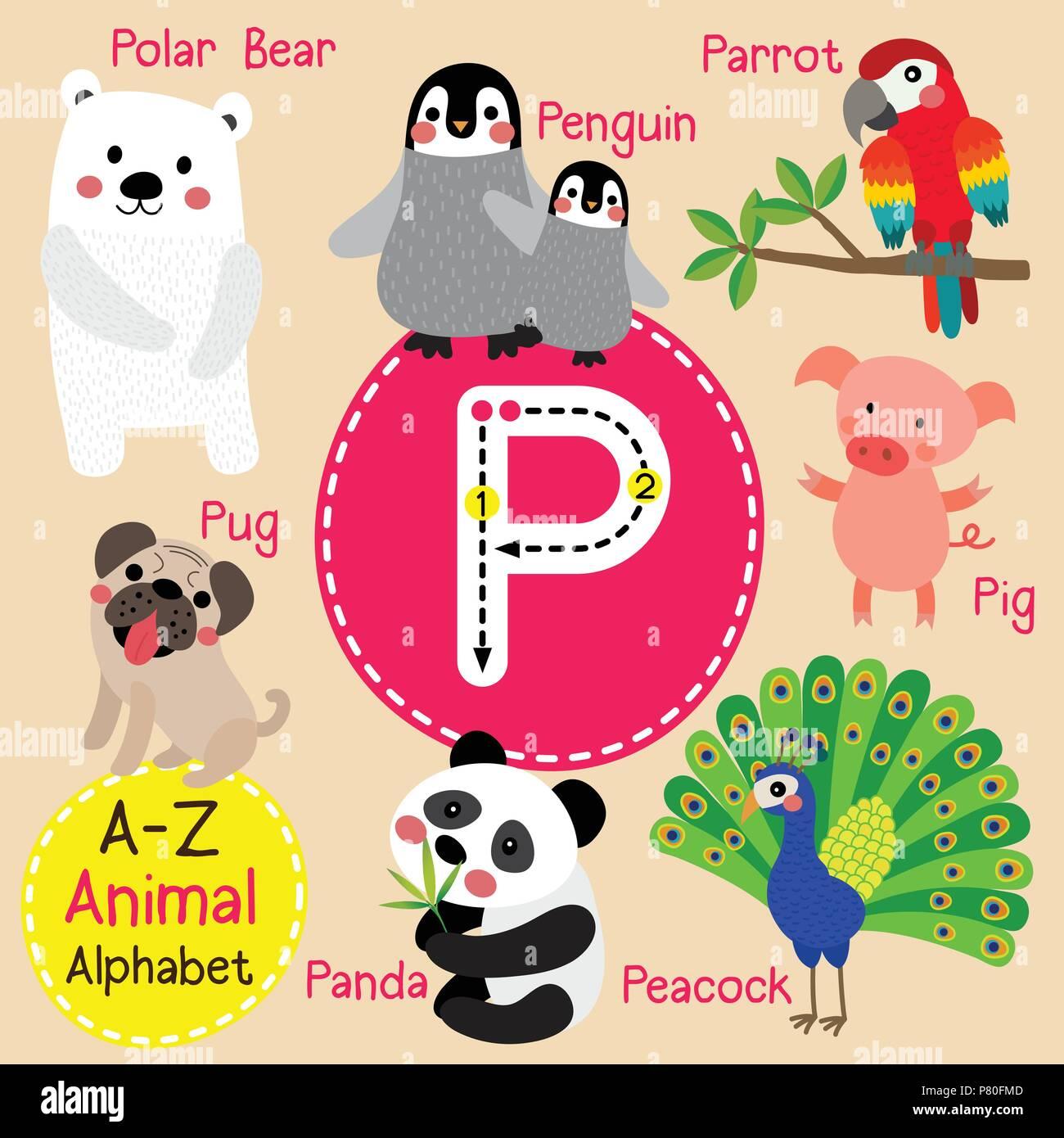 Alphabet Zoo-P