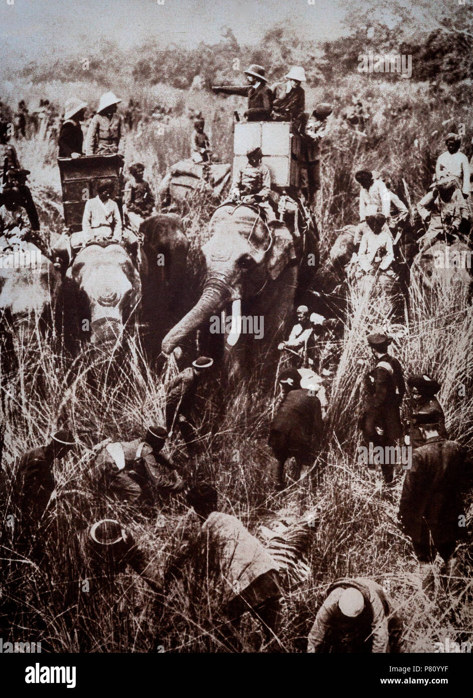 King George V took a brief holiday in Nepal spending time on elephant back whilst tiger hunting, following the Delhi Durbar of 1911. George V entering Delhi, December 7, 1911, the first time an a British monarch had come to India to be received as Emperor by Indian subjects.  The Delhi Durbar of 1911, meaning 'Court of Delhi', was an Indian imperial style mass assembly organised by the British at Coronation Park, Delhi, India, to mark the succession of an Emperor or Empress of India. - Stock Image