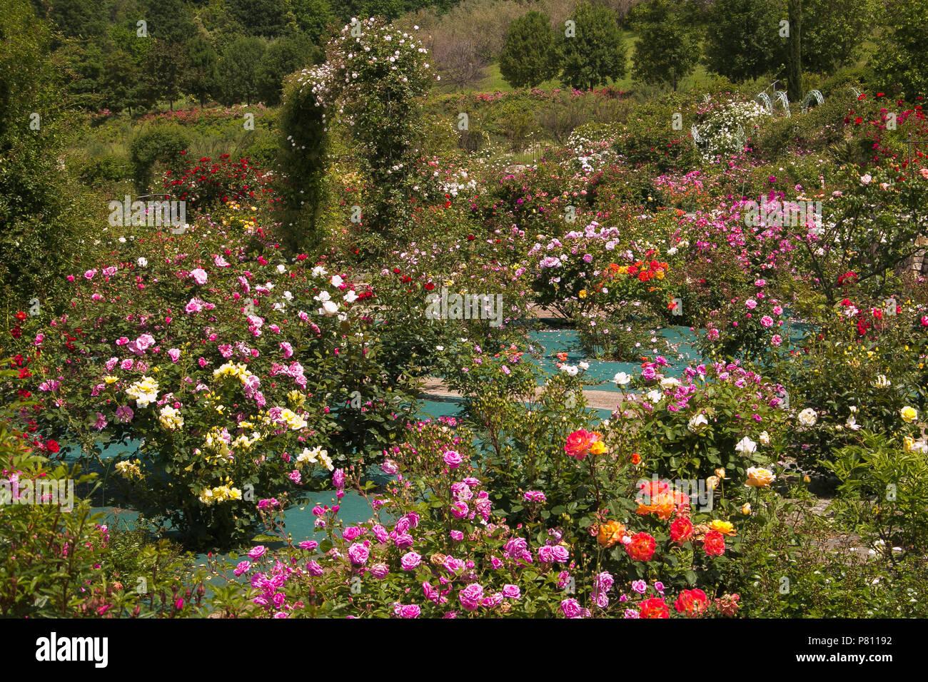 Landscape Beautiful Romantic Enchanted Stock Photos & Landscape ...