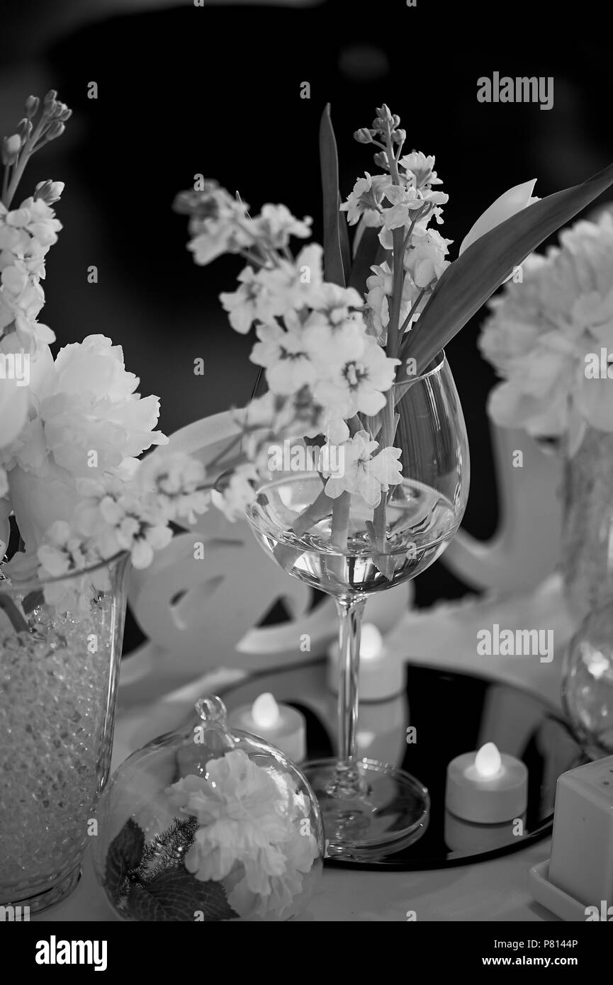 Flowers In Vase Black And White Stock Photos Images Alamy