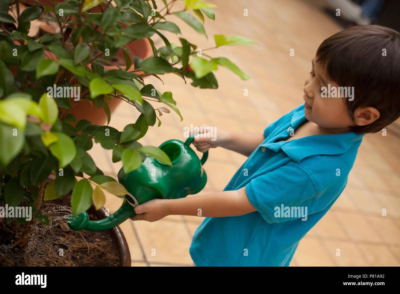 Preschool aged boy watering plants outside - Stock Image