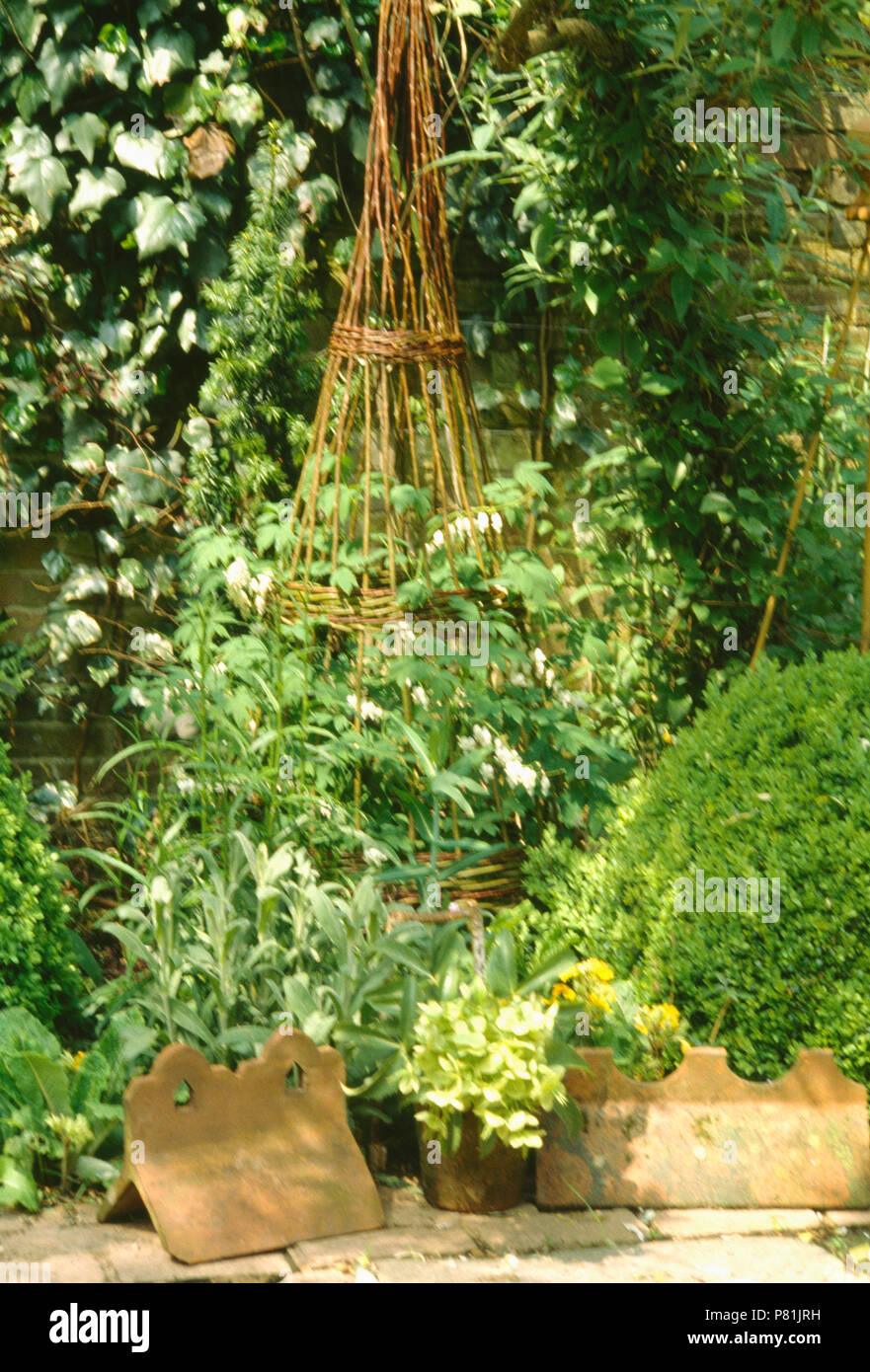 fea8c4218a0 Sunny herb bed with sage ,parsley with a willow wigwam Stock Photo ...