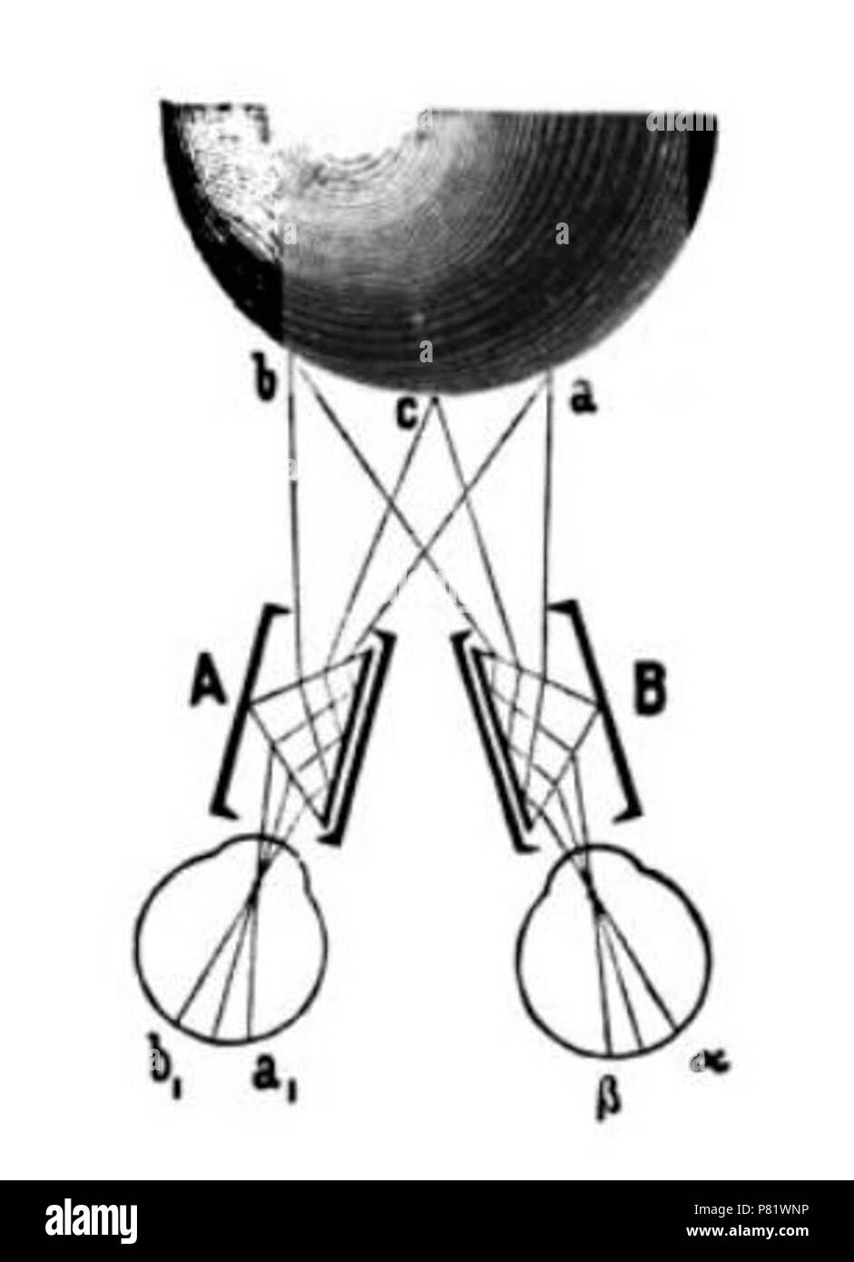 Charles Wheatstone's prismatic pseudoscope. It switched the images presented to each eye to distort depth perception. Stock Photo