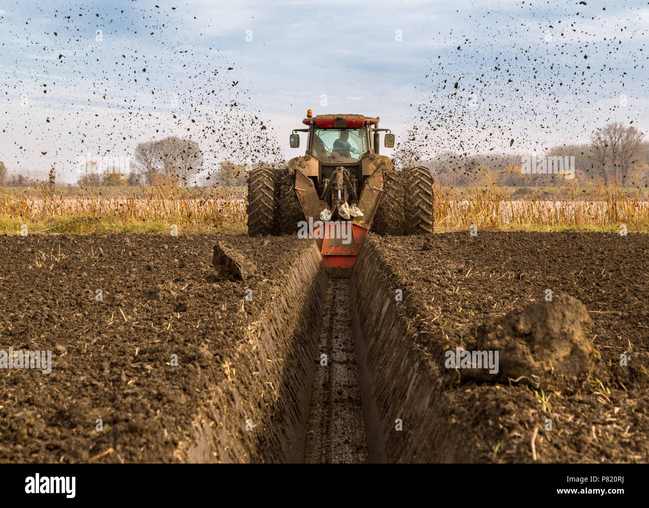 Agricultural landscape, arable crop field Stock Photo