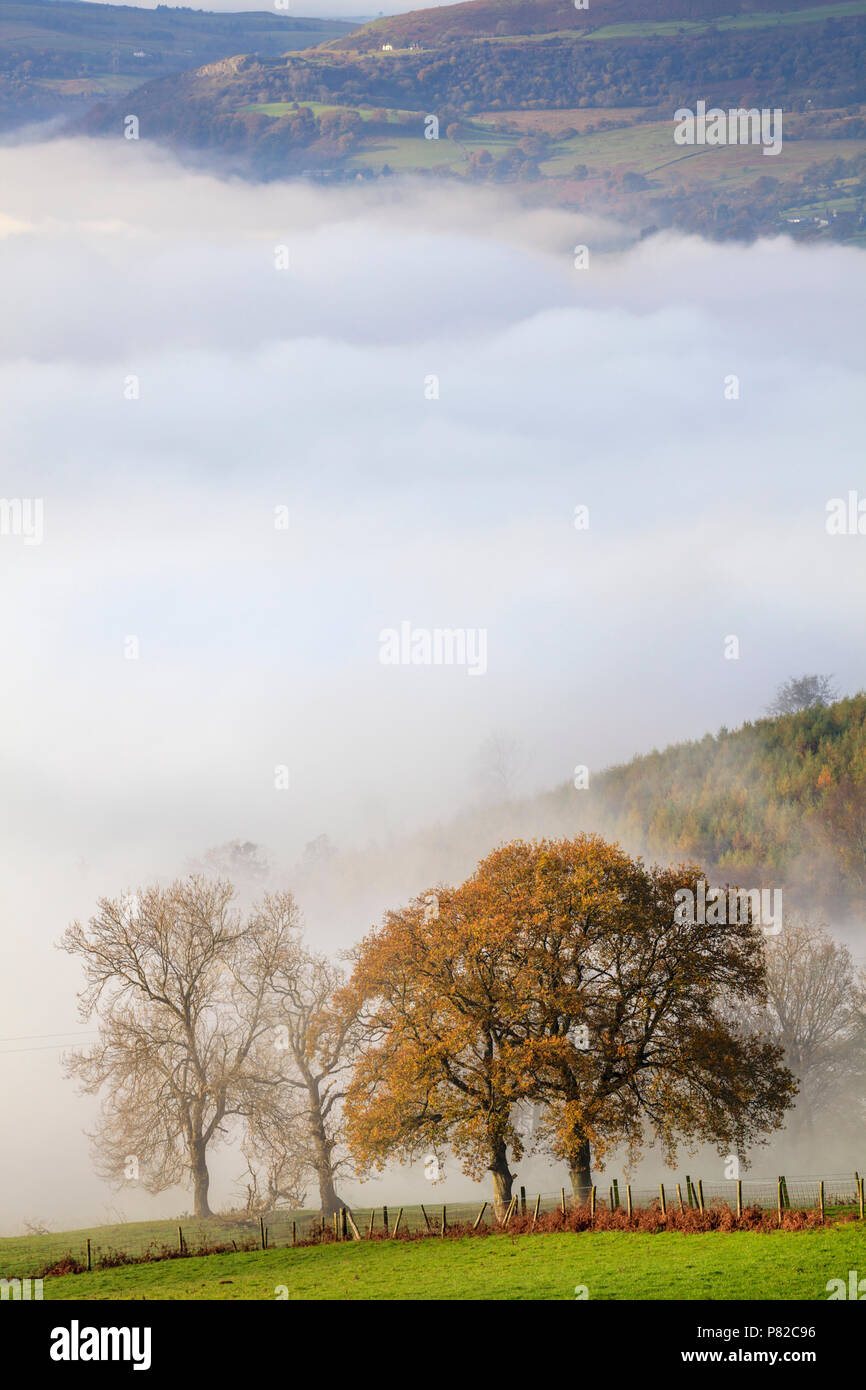 Mist in the Usk Valley in the Brecon Beacons National Park. Stock Photo