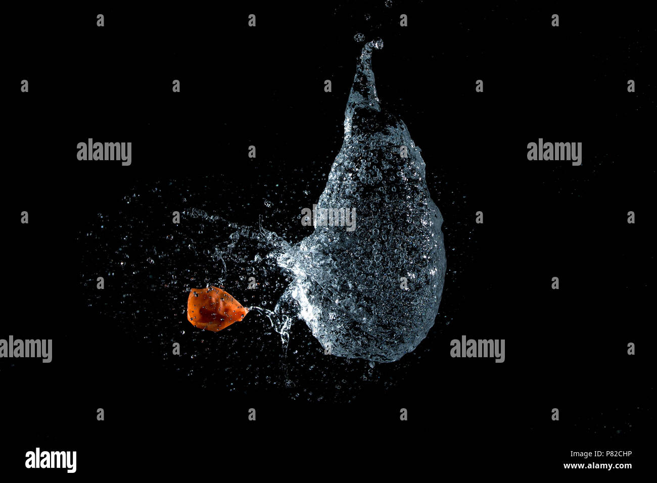 High speed capture of a water balloon bursting - Stock Image