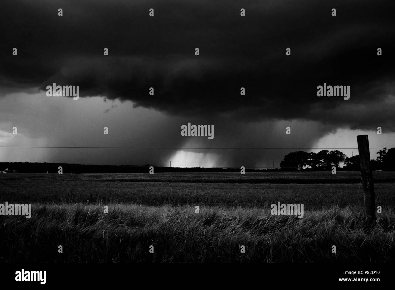 Black and white of an approaching thunderstorm across the fields on a farm in Raleigh North Carolina - Stock Image
