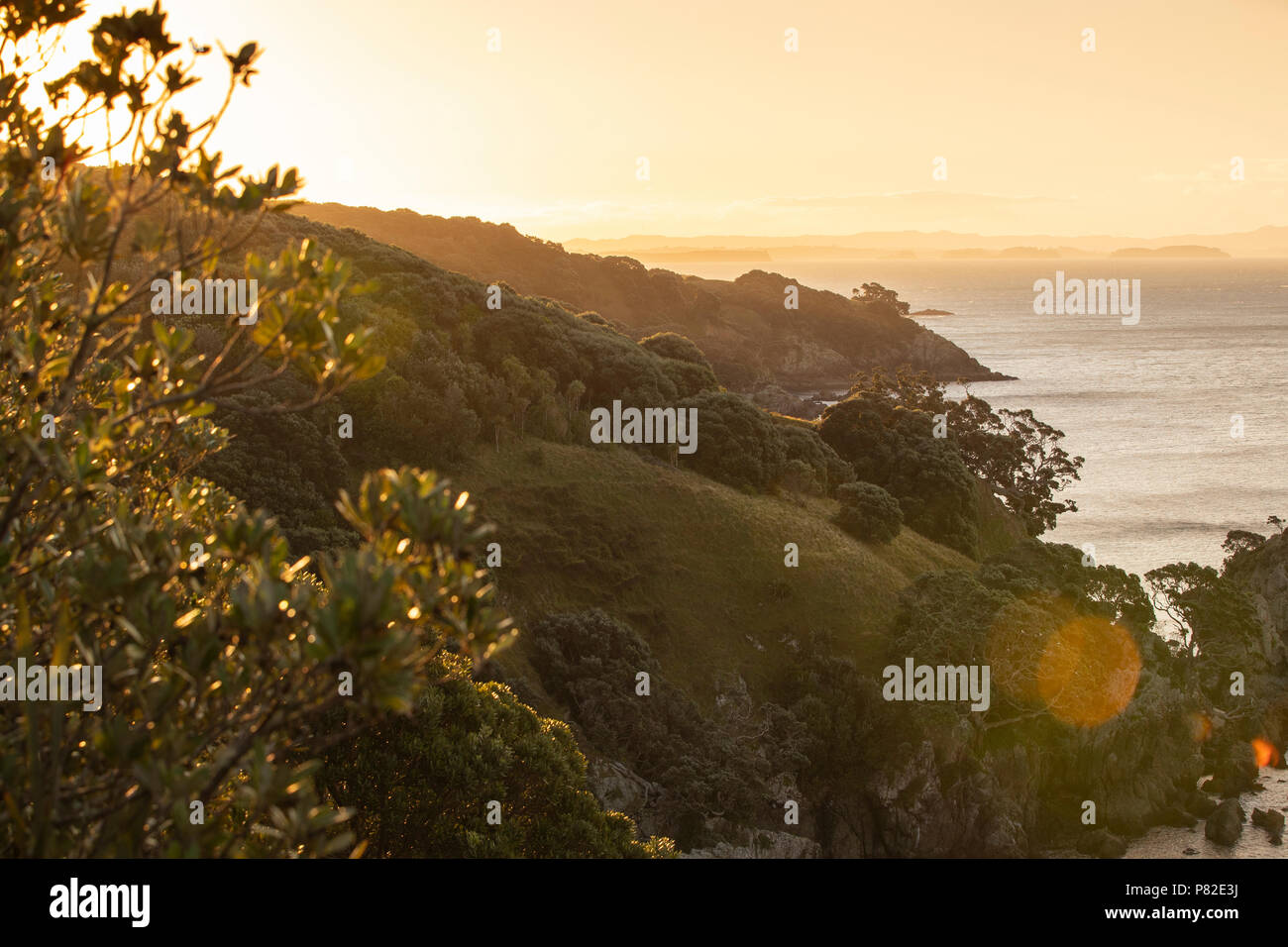 Tiritiri Matangui coastline at sunset - Stock Image