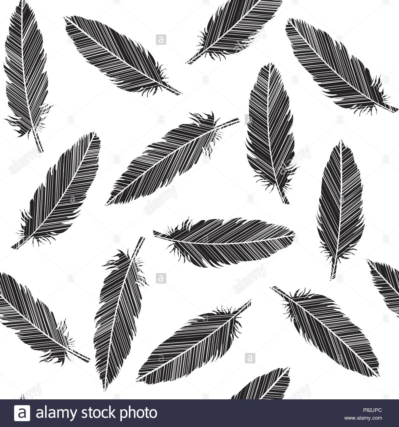 Birds feathers striped in black and white - Stock Image