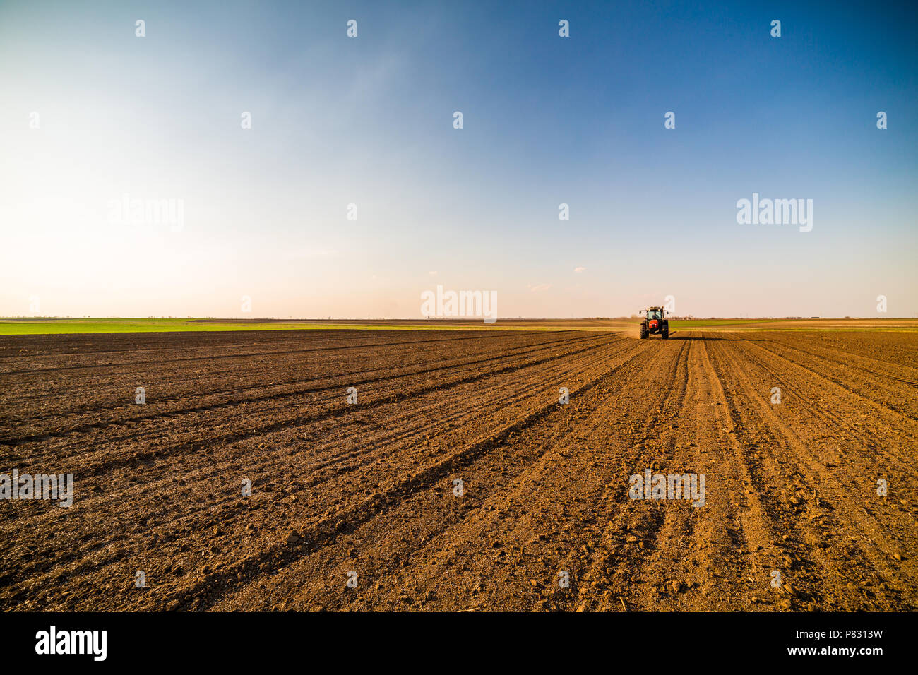 Farmer fertilizing arable land with nitrogen, phosphorus, potassium fertilizer - Stock Image