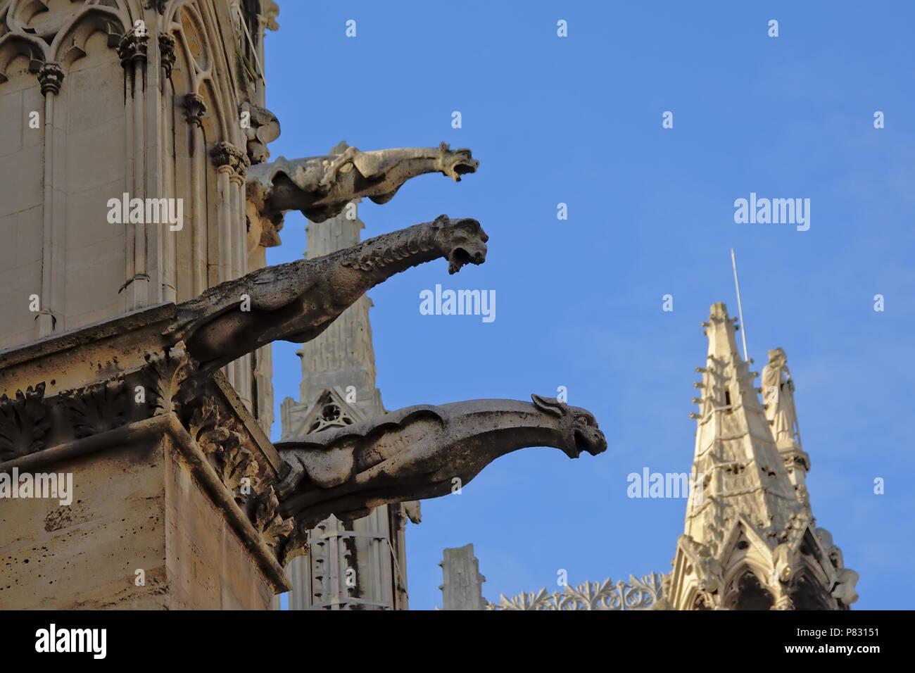 Gargoyles, detail of Cathedral of Notre Dame de Paris on a sunny day with clear blue sky - Stock Image
