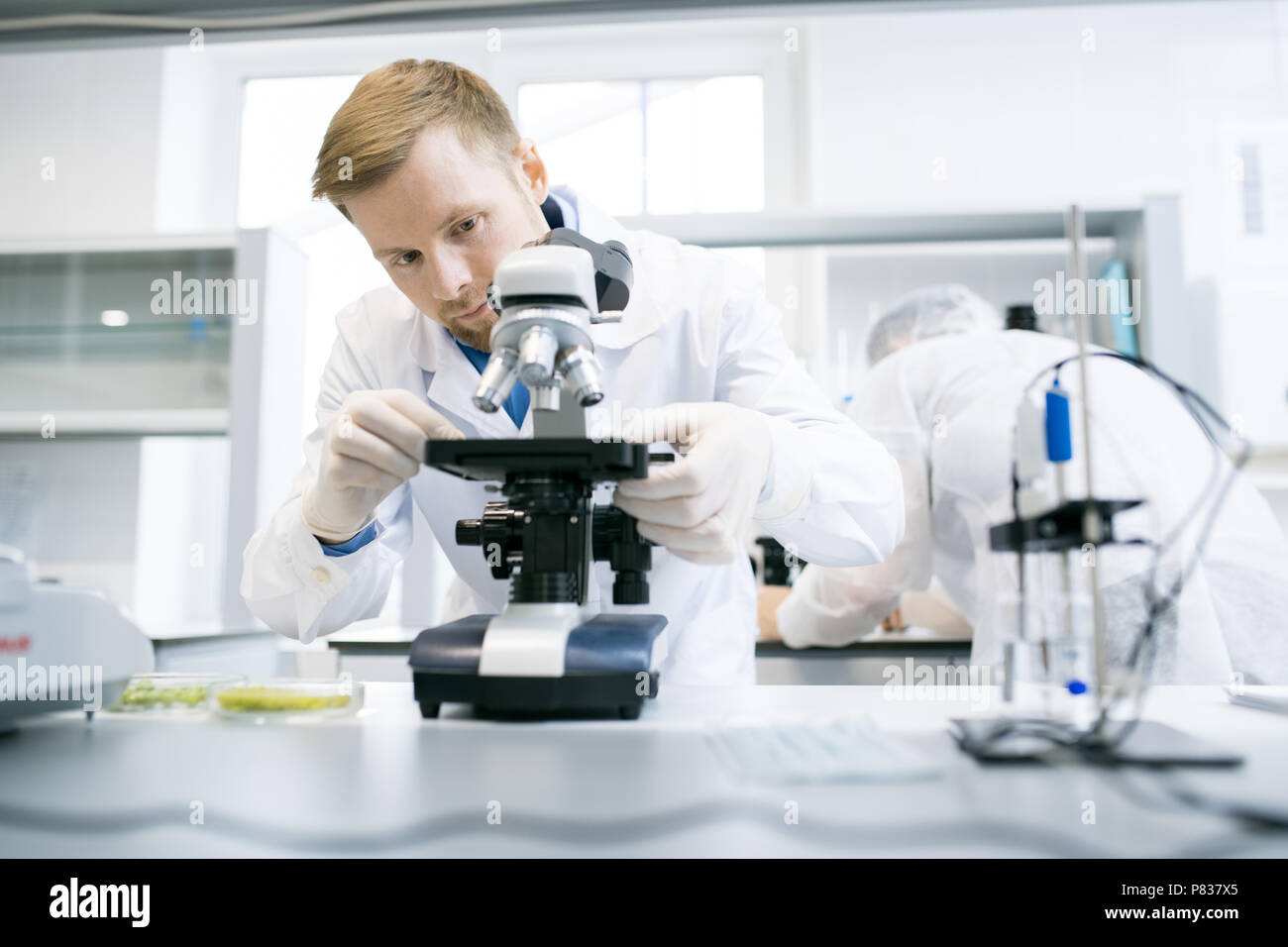 Scientist Using Microscope in Lab - Stock Image