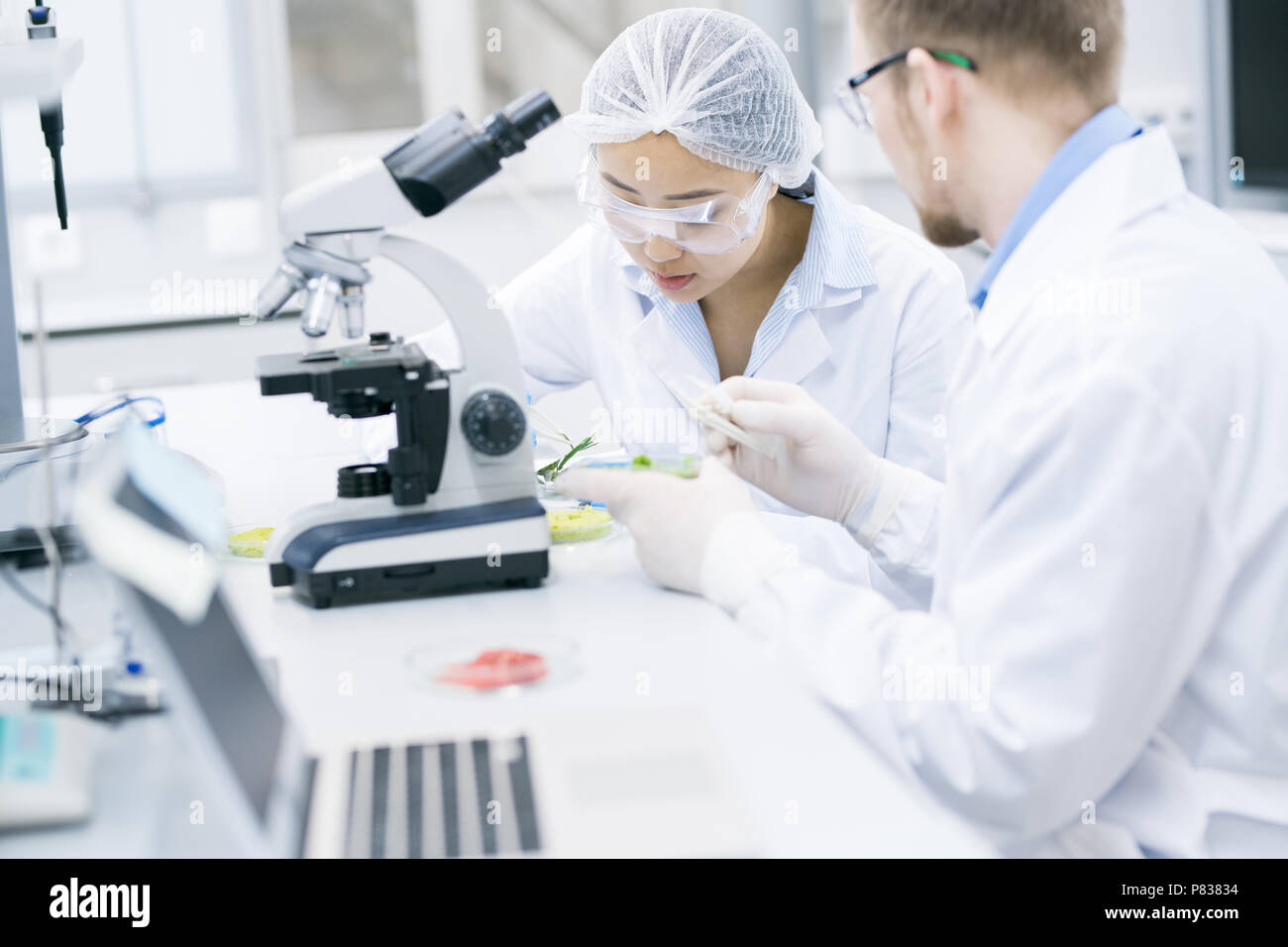 Team of Scientists Working in Laboratory - Stock Image