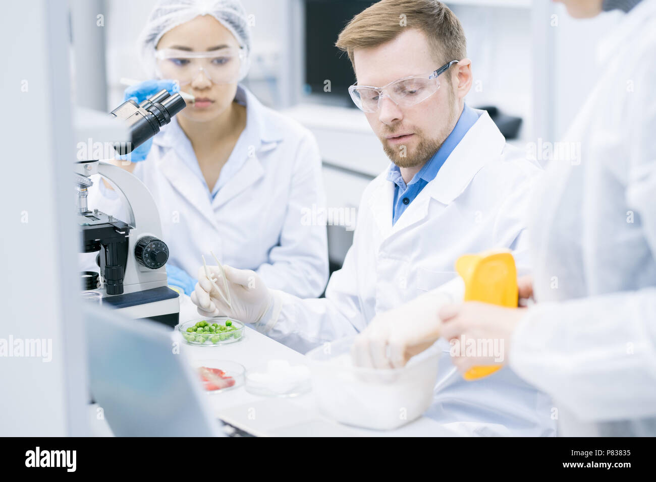 Team of Scientists Doing Research in Laboratory - Stock Image