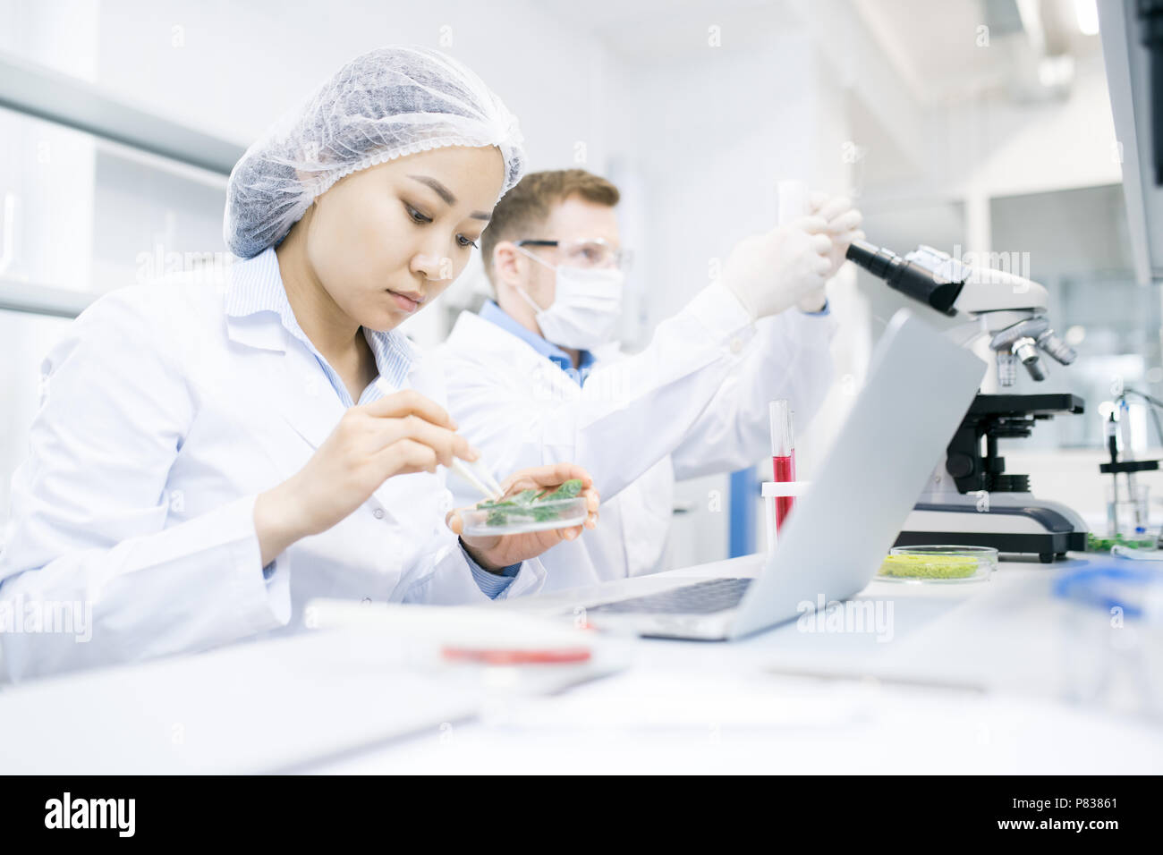 Modern Scientists Doing Research in Laboratory - Stock Image