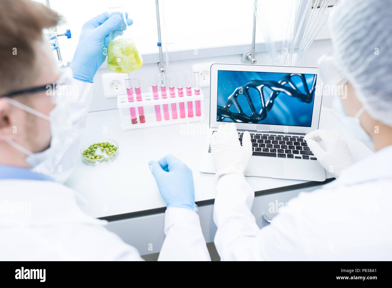 Two Scientists doing Research - Stock Image