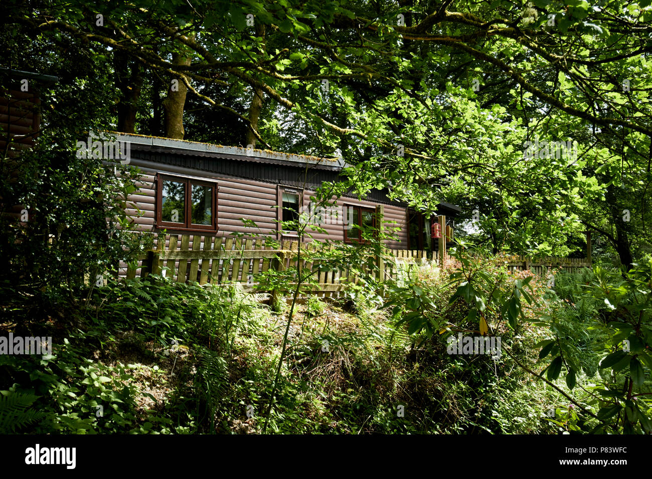 private log cabin tourist accommodation set in secluded woodland in the lake district england uk Stock Photo