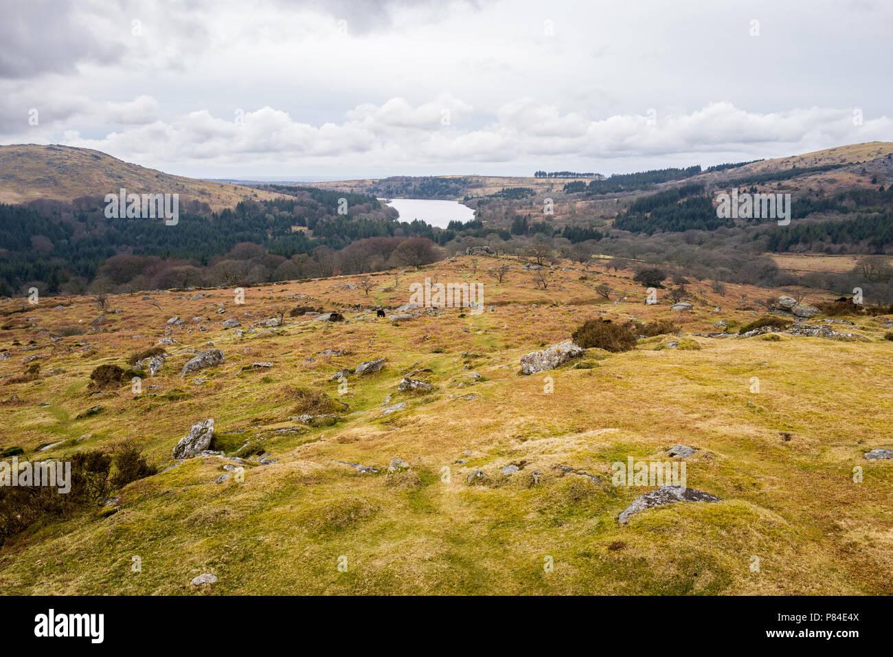 View west towards Burrator Reservoir from Middleworth Tor, Dartmoor National Park, Devon, UK.  Sheepstor, left, - Stock Image