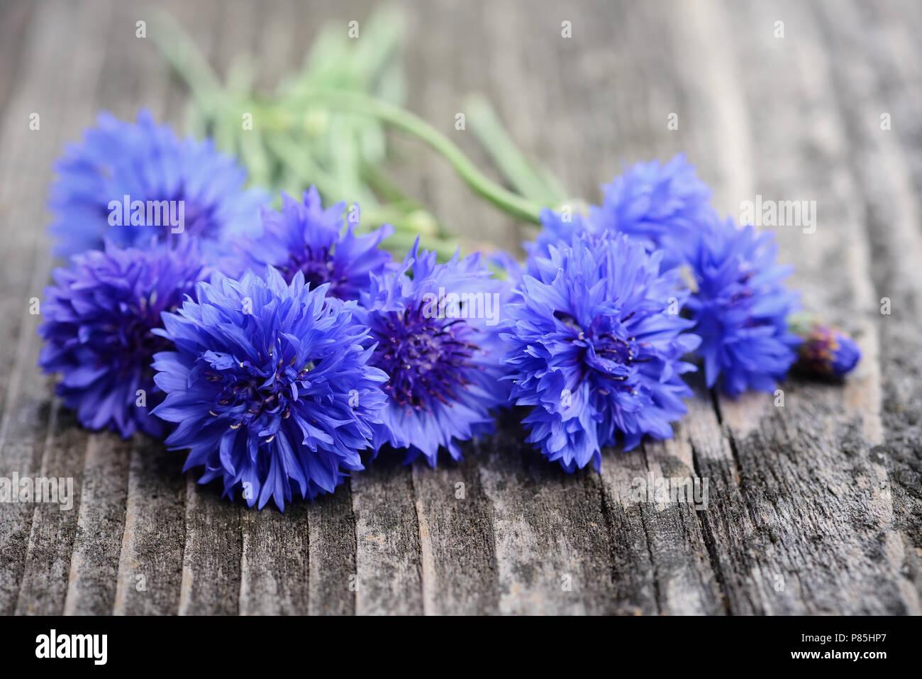 Cornflower Blue Flowers Centaurea Cyanus On An Old Wooden Table
