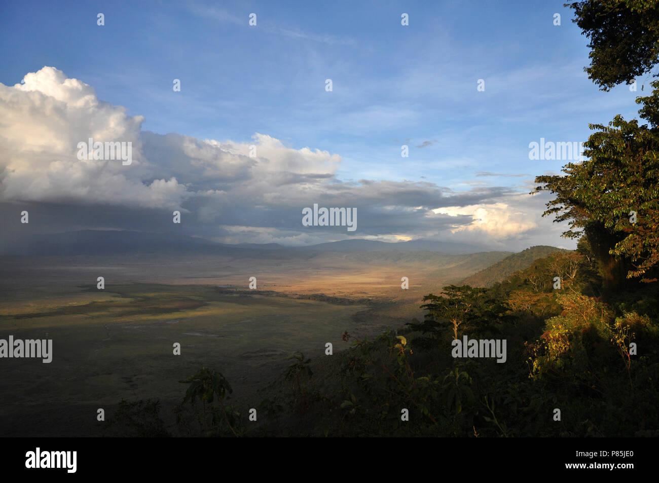 Ngorongoro krater, Ngorongoro crater (Tanzania) - Stock Image