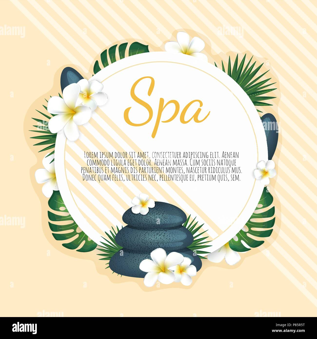 Spa banner withPlumeria flowers and zen stone. Vector illustration - Stock Vector
