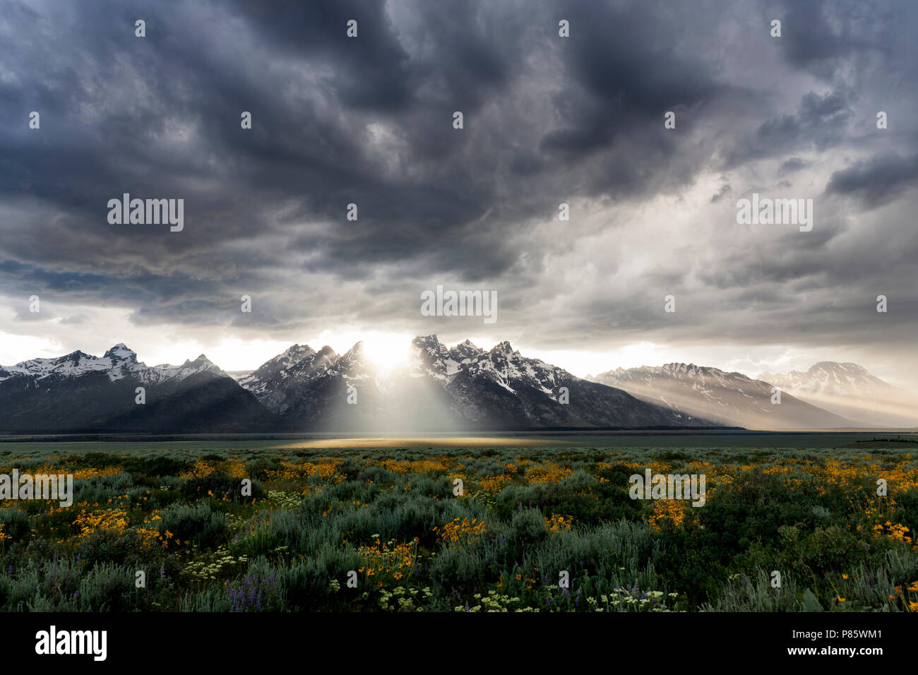 WY02757-00...WYOMING - Storm clouds over the Teton Range in Grand Teton National Park. - Stock Image