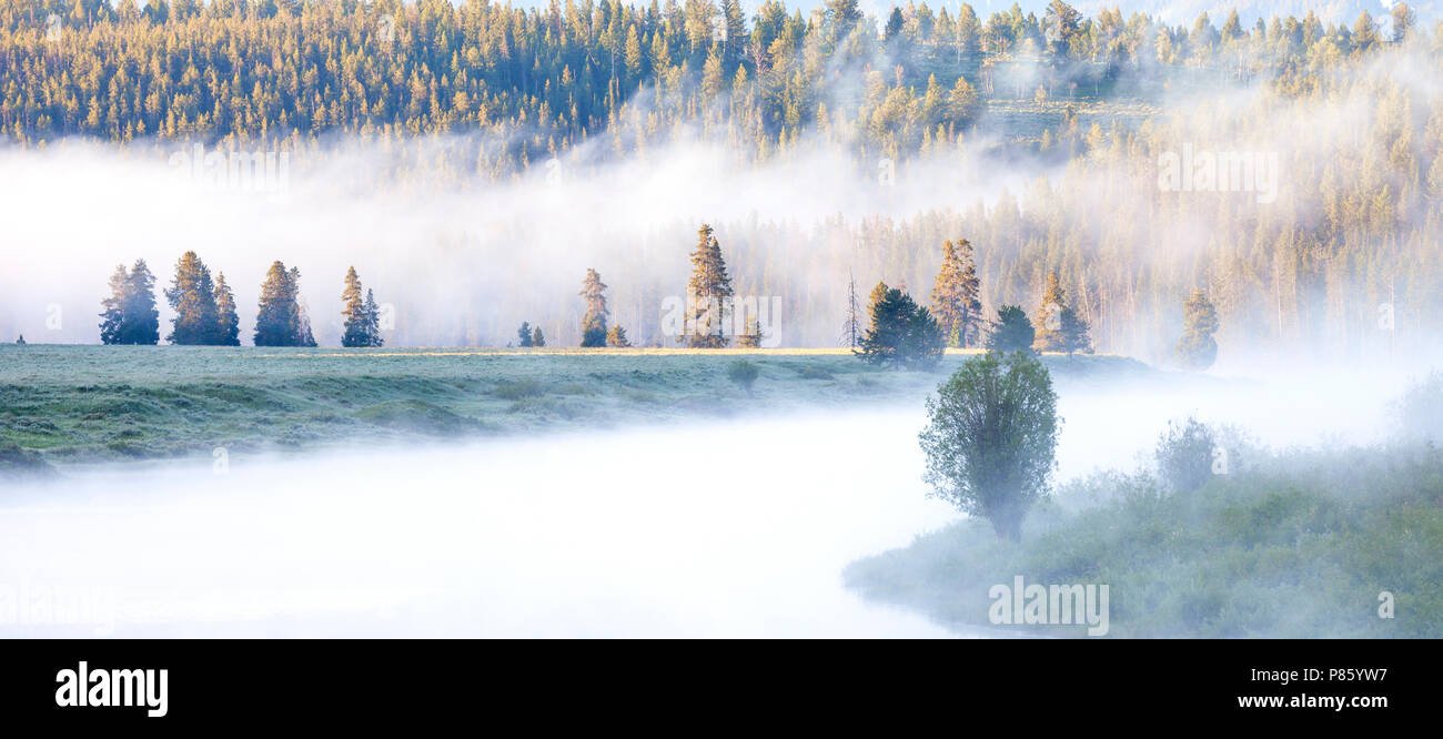 WY02785-00...WYOMING - Foggy sunrise at the Oxbow of the Snake River in Grand Teton National Park. - Stock Image