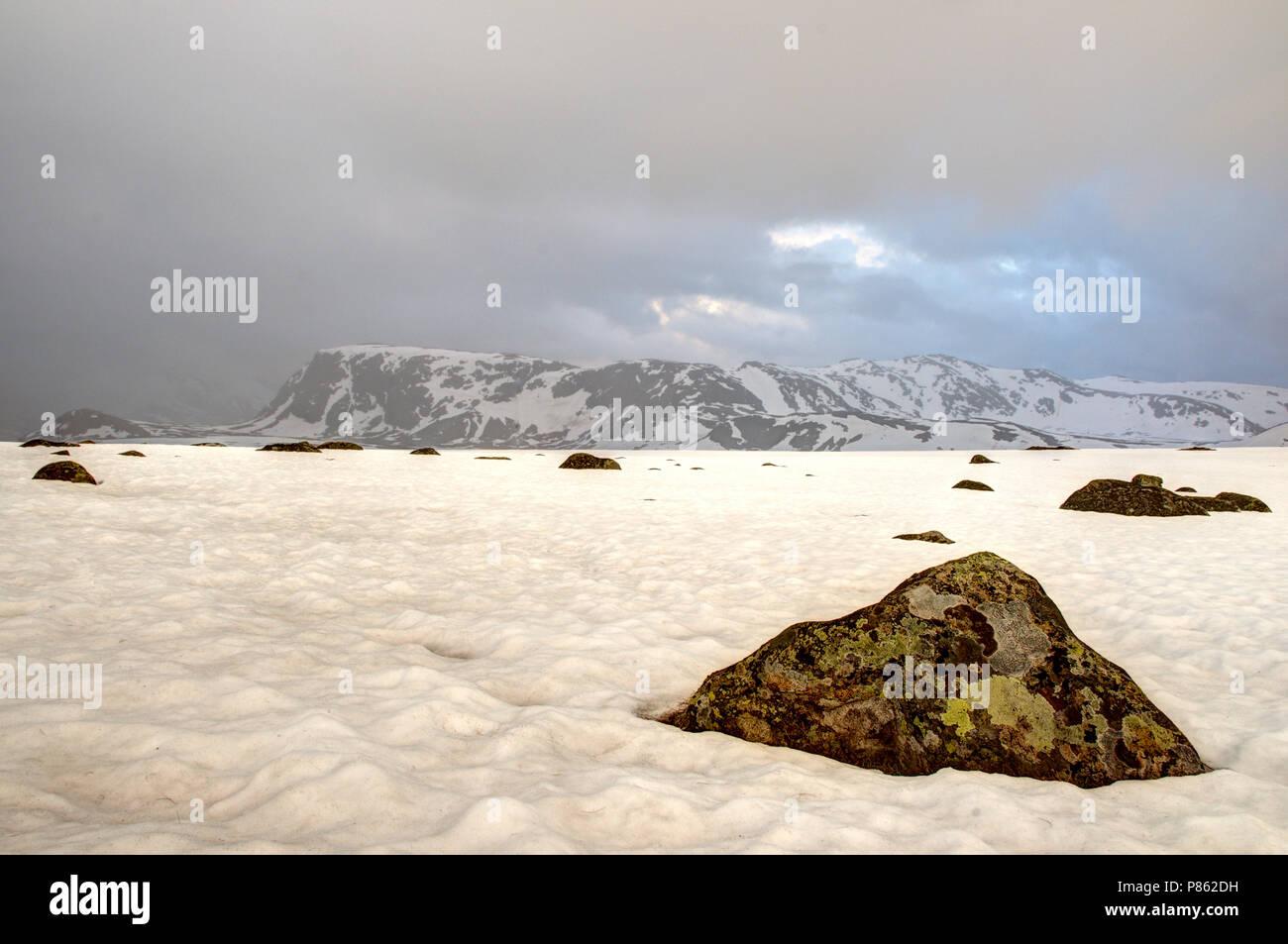 Jotunheimen Noorwegen 2012 - Stock Image