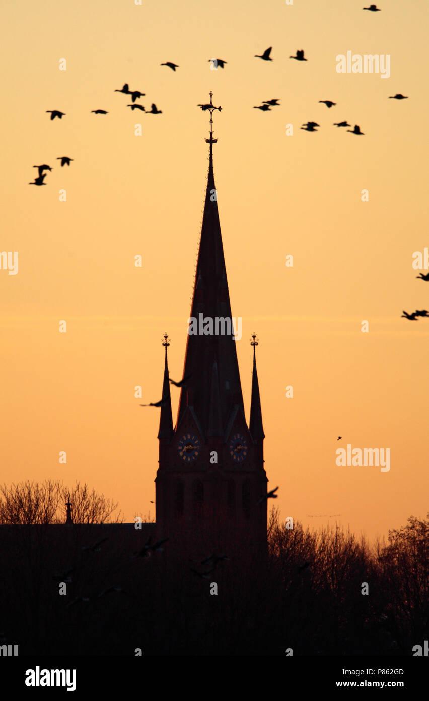 Nederhorst Den Berg Nederland.Kerktoren Van Nederhorst Den Berg Nederland Church Of