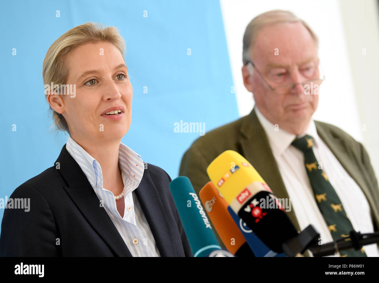 10 July 2018, Germany, Berlin: Alexander Gauland and Alice Weidel, parliamentary group leaders of the Alternative for Germany (AfD) in the German Bundestag, deliver statements during a press conference on the 'Masterplan Migration', which was previously presented by the German Minister of the Interior. Photo: Britta Pedersen/dpa-Zentralbild/dpa - Stock Image