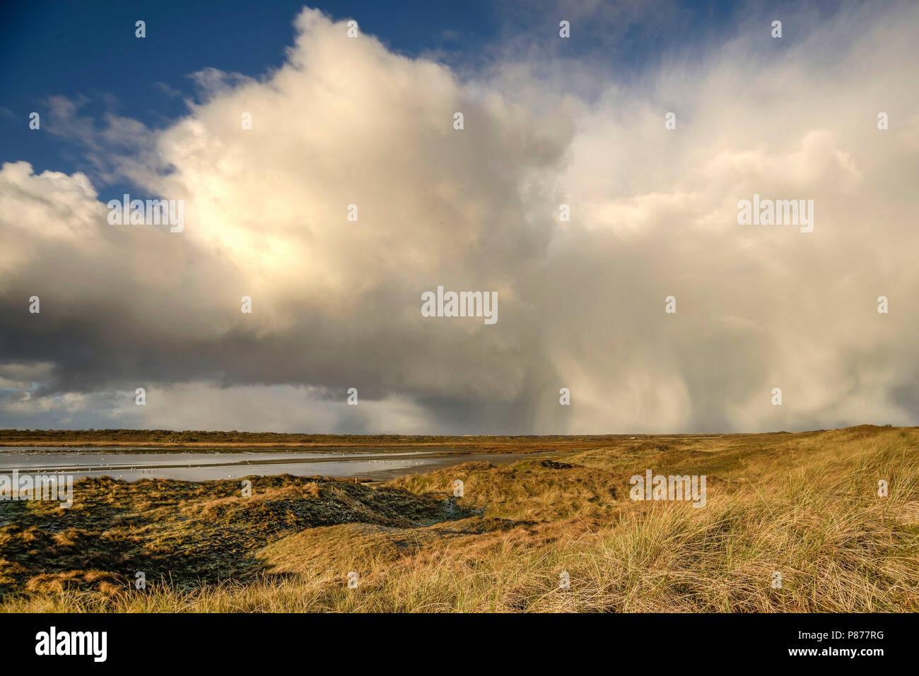 Cumulonimbuscloud Mokbaai Texel, Cumulonimbus wolk - Stock Image