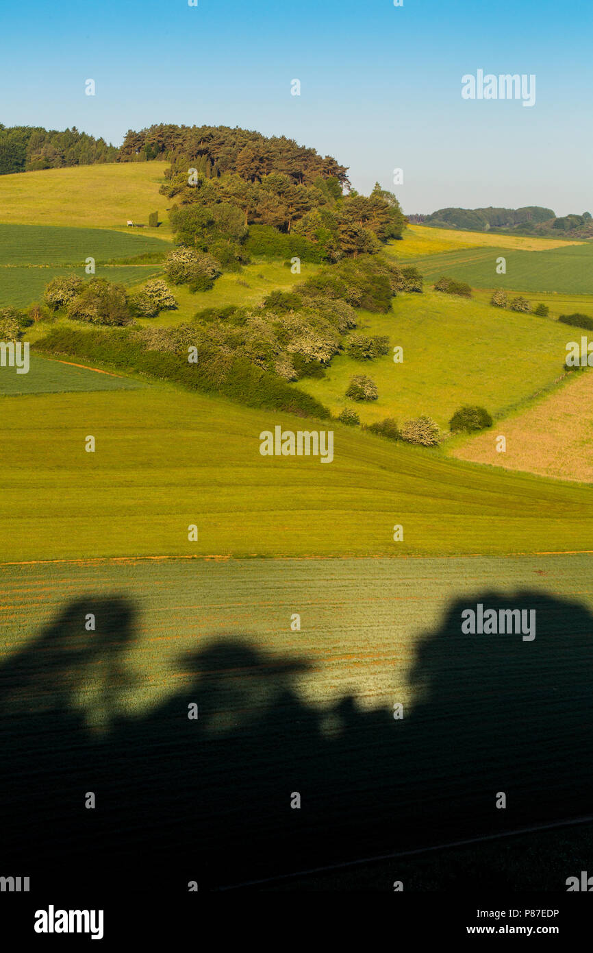 Graanakker in Duitsland, Corn field in Germany - Stock Image
