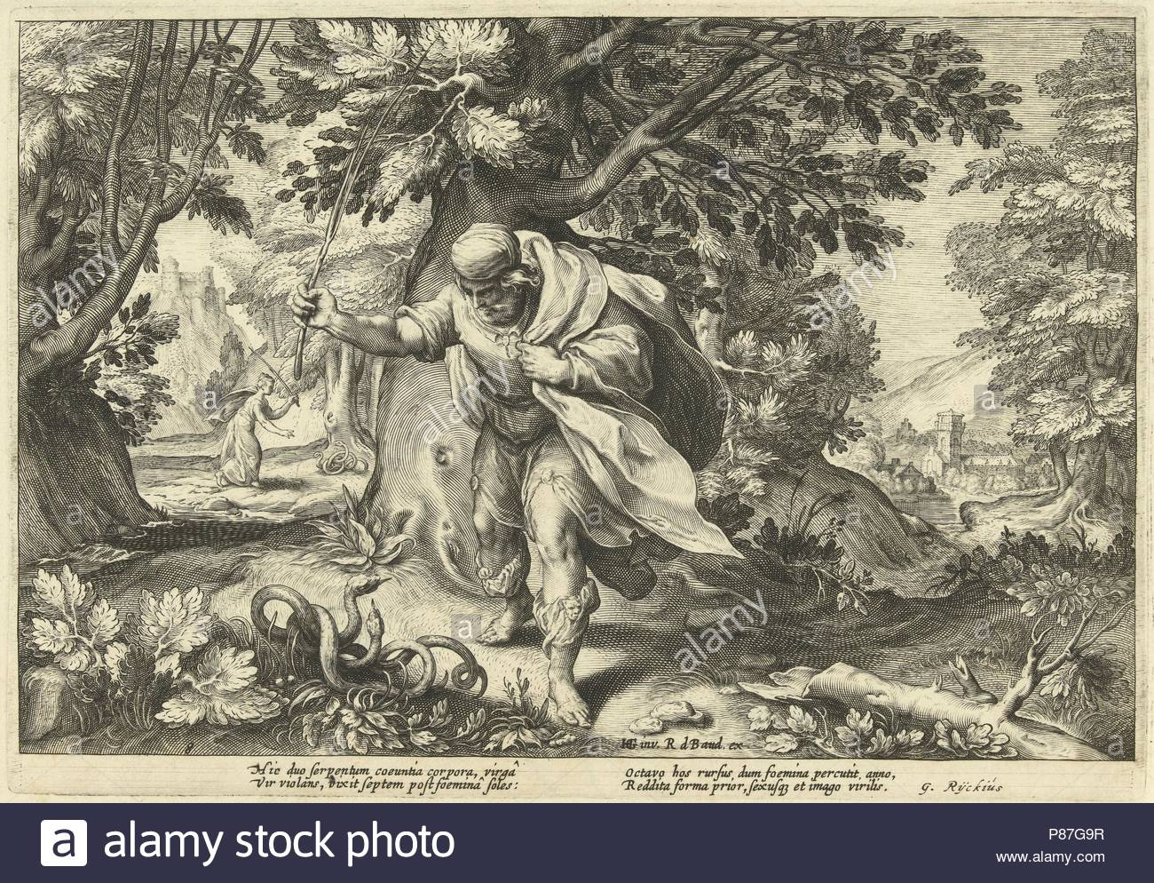 Teiresias stores in a forest two mating snakes. Then he turned into a woman. Seven years later he changed back into a man again after two mating snakes have beaten, part of a series of 52 prints that depict stories from Ovid's Metamorphoses, print maker: Hendrick Goltzius (workshop of), Dating 1615. - Stock Image