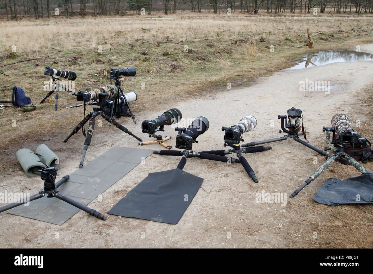 camera's, telelenzen en statieven; cameras, telephoto lenses and tripods - Stock Image