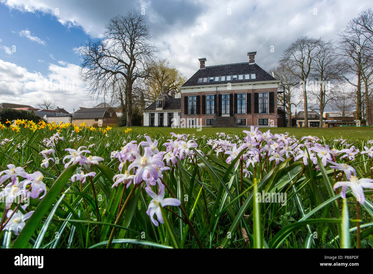 Chionodoxa Forbesii Bij Land Landhuis Lindenoord Stock Photo