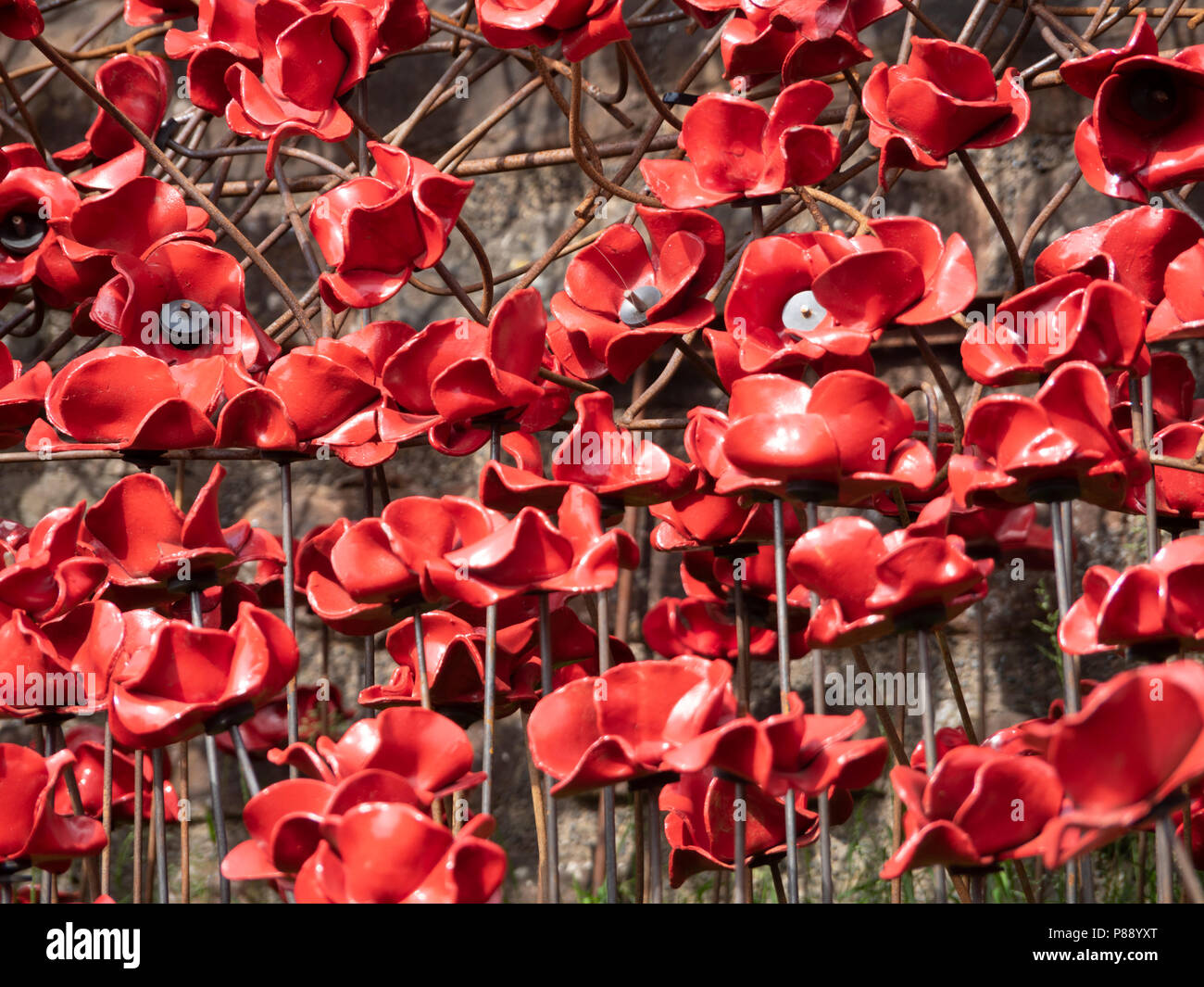Carlisle Castle, Cumbria, UK:Weeping Window commemorative art installation, 100 years since WW1. 888,246 ceramic art poppies mark the number of lives  - Stock Image