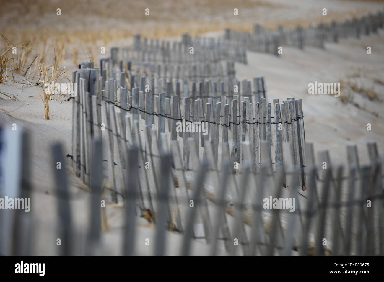 Beach Fence - Stock Image