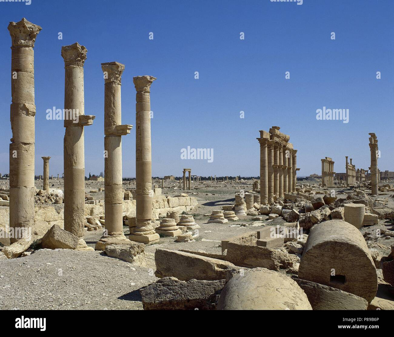 Syria Palmyra City The Great Colonnade Roman Empire Ruins Tadmur