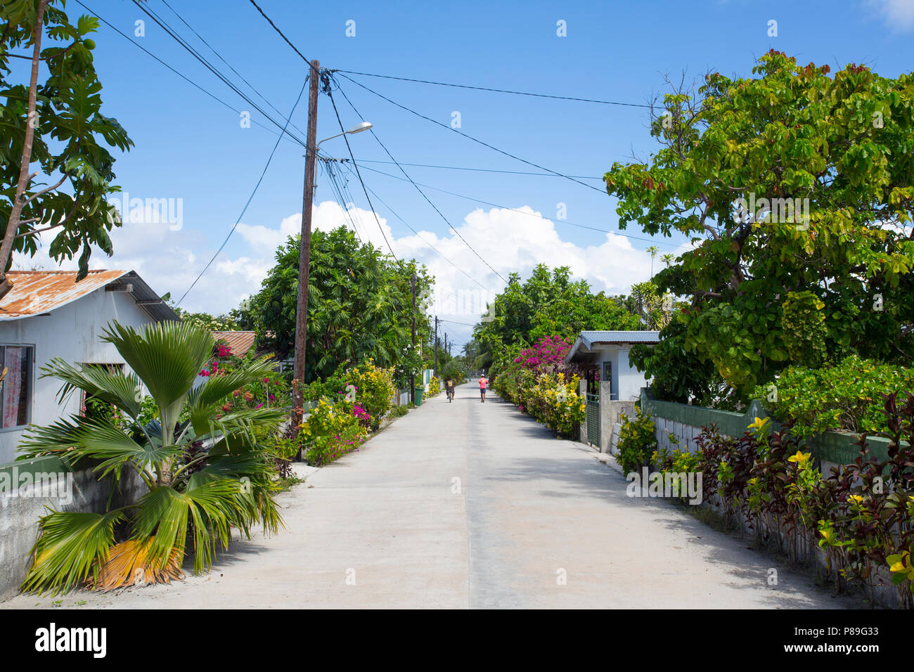Road on Manihi Atoll - Stock Image