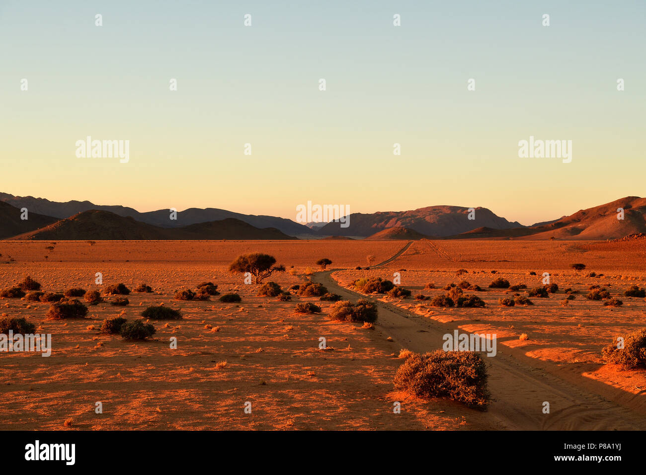 Sand track through the sandy desert, Tiras mountains on the horizon at sunset, Namibia - Stock Image