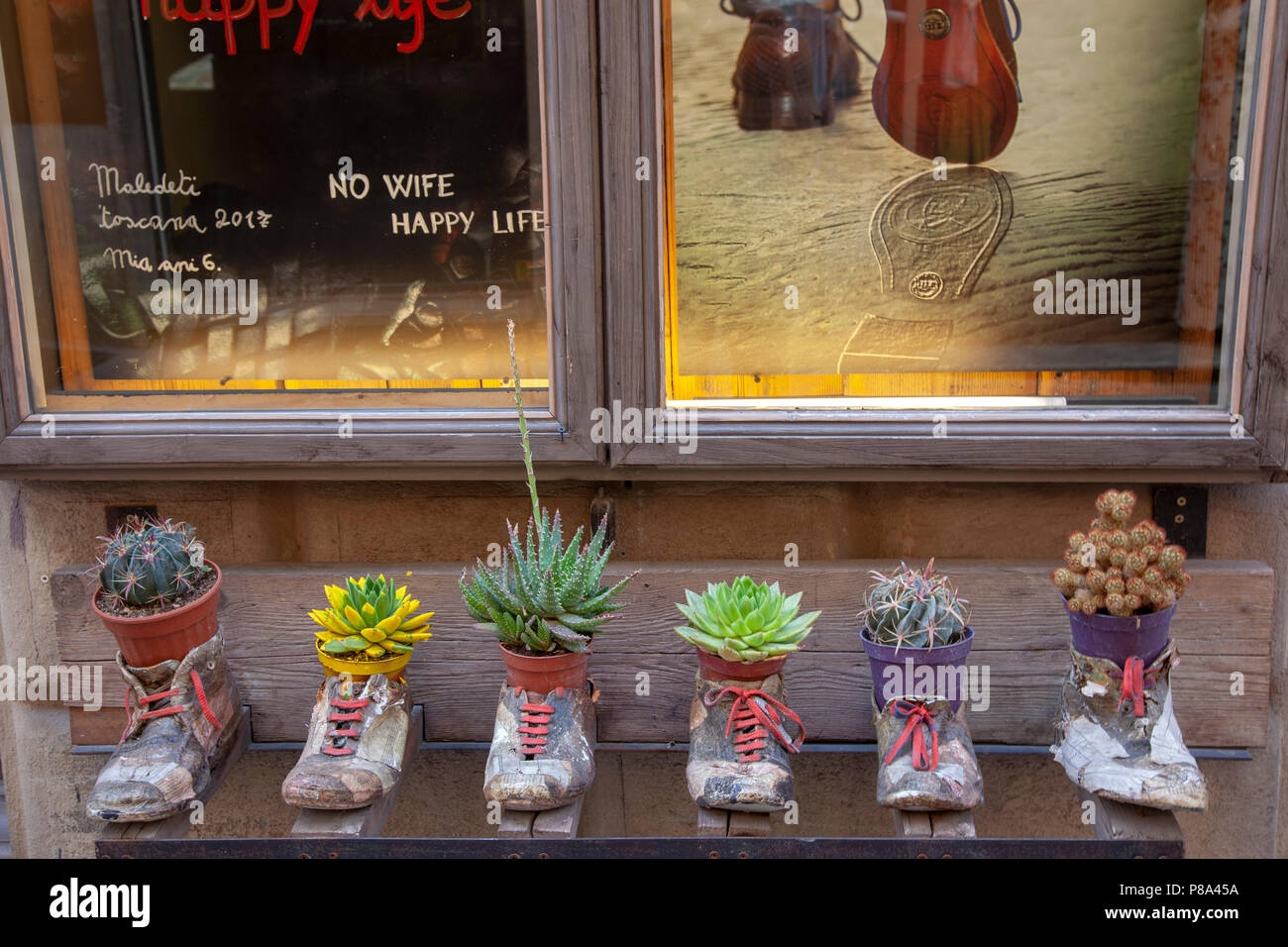 Eccentric pot holders with succulents on display (Montepulciano - Tuscany - Italy). Cache-pots farfelus avec plantes grasses. - Stock Image