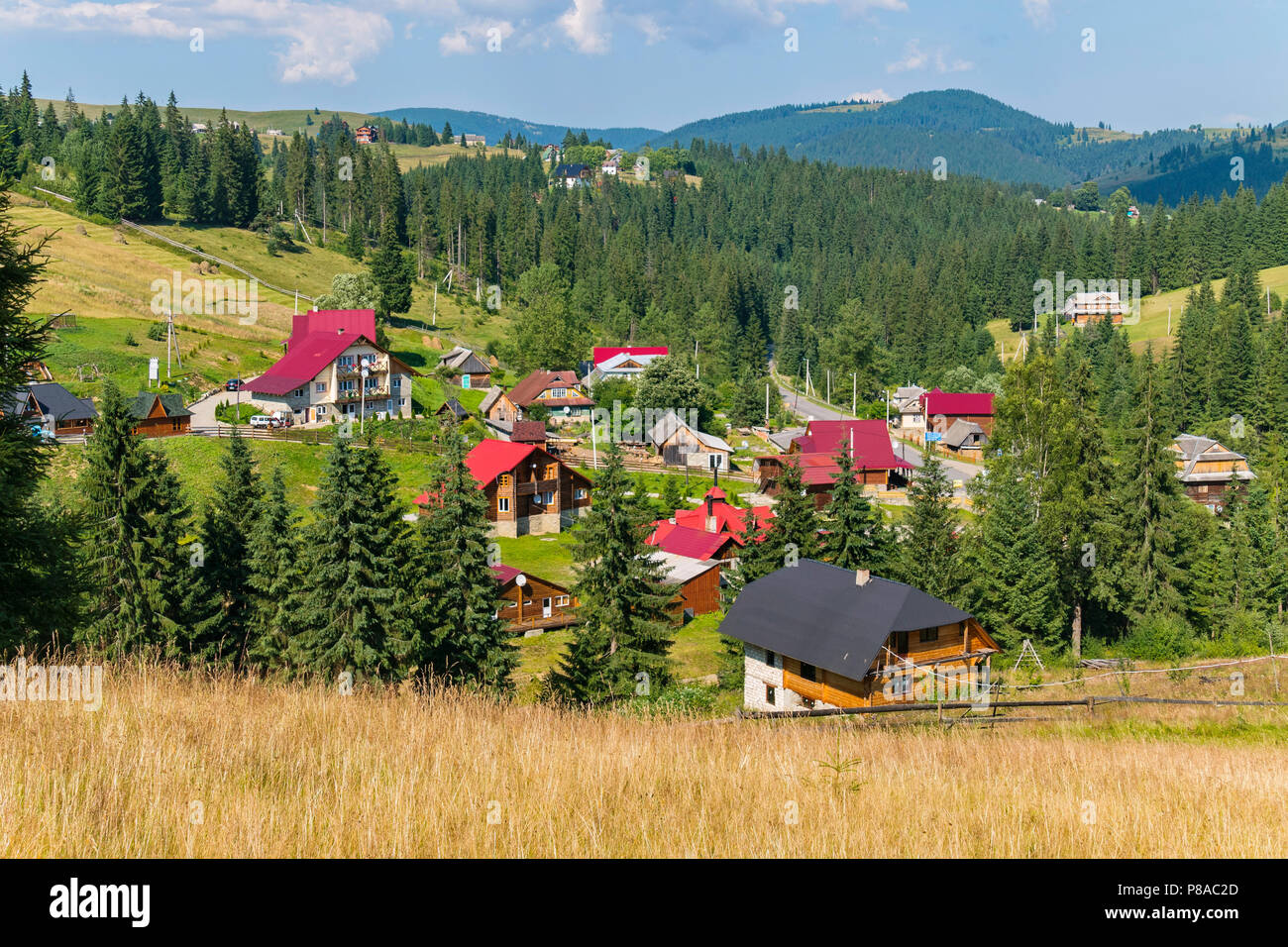 beautiful roofs of modern houses in a mountainous area surrounded by green spruces . For your design - Stock Image